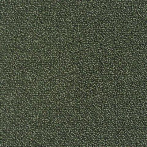 Pacific Crest Carpet Deco - Carpet Vidalondon
