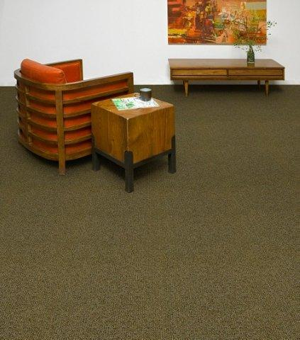 Tandus Carpet Tandus Carpet Flooring Product Collection