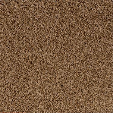 Shaw Kathy Ireland Carpet