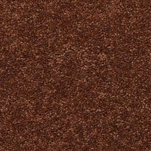 Mohawk Carpet Mohawk Carpet Flooring Aladdin 01