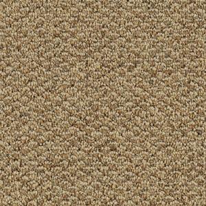 Mohawk Aladdin Carpet Cost Vidalondon
