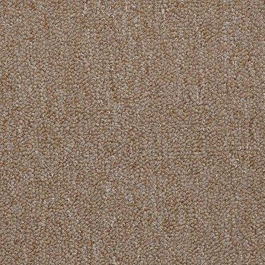 Shaw Philadelphia Commercial Carpet Mack Concord Ca