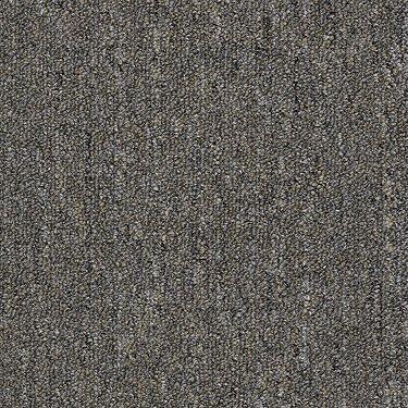Shaw Philadelphia Commercial Carpet Neyland Ii