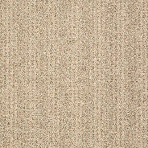 Abundant life collection shaw contract commercial carpet for Contract flooring