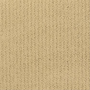 Top 28 Shaw Flooring Alliance On The Rocks 0c040 Jute Carpet Carpeting Berber