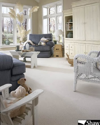 Shaw Carpet Tile Commerical Residential