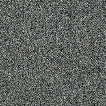 Shaw Philadelphia Commercial Carpet Sale Concord Ca San Ramon